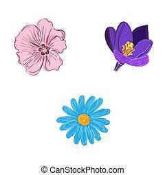 set of flower in sketch style, vector illustration