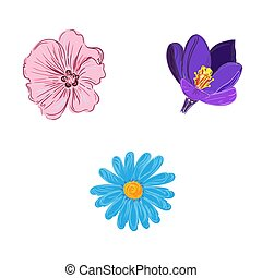 set of flower in sketch style, vector illustration