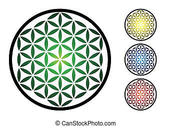 set of flower of life symbol - illustration