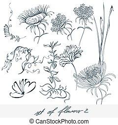 Set of flowers 2