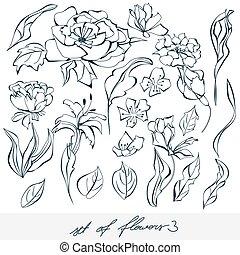 Set of flowers 3