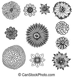 Set of flowers - Monochrome Set of flowers. Floral elements....