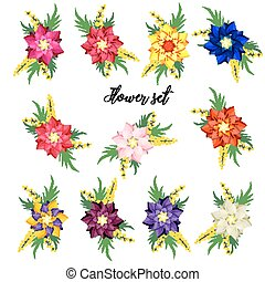 Set of flowers on a white background.