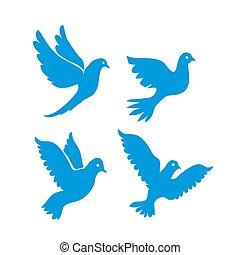 Set of flying birds sign isolated on white.
