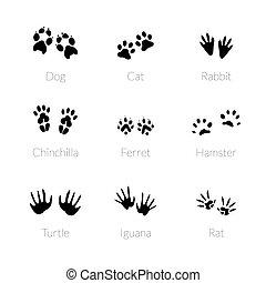 Set of footprints animals.