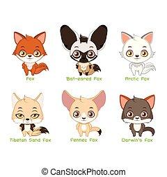 Set of fox species
