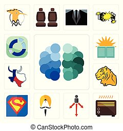 Set of free brain, heater, approach, sikh, s, tiger, made in texas, sunday school, sector icons