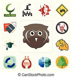 Set of free owl, pinetree, brain, chili cook off, sector, tiger, education, no bullshit, homework icons