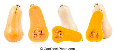 Set of Fresh butternut squash isolated on a white.