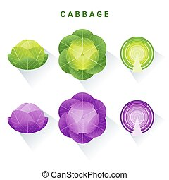 Set of fresh green and red cabbages isolated on white background