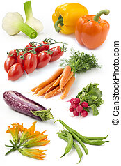 set of fresh vegetables on white background
