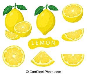Set of fresh whole, half, cut slice lemon fruits isolated on white background. Summer fruits for healthy lifestyle. Organic fruit. Cartoon style. Vector illustration for any design.
