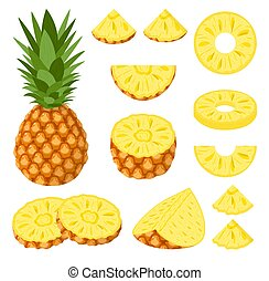 Set of fresh whole, half, cut slice pineapple fruits isolated on white background. Summer fruits for healthy lifestyle. Organic fruit. Cartoon style. Vector illustration for any design.