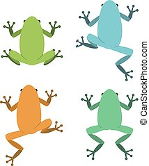 Set of frog in flat style, vector