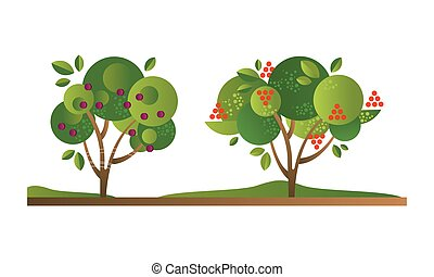 Set of Fruit Trees with Ripe Fruits, Cherry Orchard Tree Flat Vector Illustration Isolated on White Background.