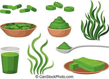 Set of funds from algae. Vector illustration on white background.