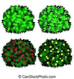 Set of garden bushes