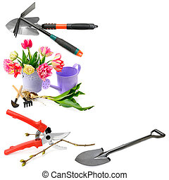 Set of garden tools isolated on white background. Collage. Free space for text.