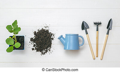 Set of garden tools, soil and plant on a wooden background.