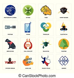 Set of generic, made in texas, mystery person, education, service dog, triskelion, footage, tiger, photography camera icons