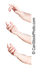 Set of gesturing hands, on white background.
