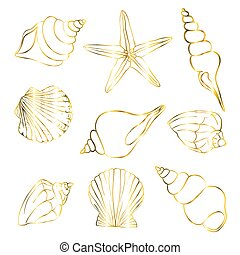 Set of gold shells, starfish on a white background. Vector, illustration