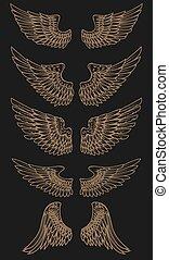 Set of golden wings on dark background. Vector illustration