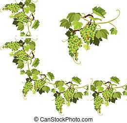 Set of Grapes frame, vignette and repeated element  for wine labels or menu design. Isolated on white background.