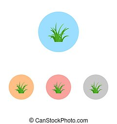Set of grass icon isolated on white background. Vector illustration