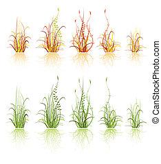 set of grass