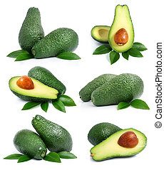 set of green avocado fruits with leaf isolated on white -...