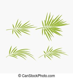 set of green bamboo vector illustration