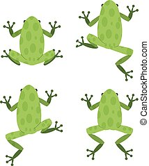 Set of green frog in flat style with pattern