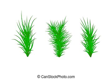 Set of Green grass. Green Grass White Background. Vector illustration