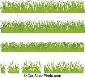 Set of green grass isolated on whit