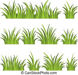 Set of green grass isolated on white background. Vector illustration.