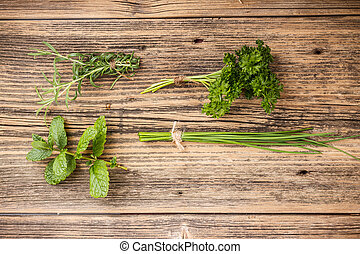 Set of green herbs