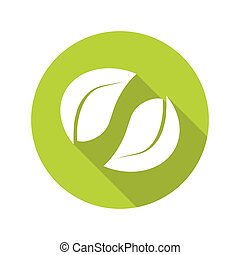 Set of green leaves isolated on white background, organic icon. Vector.