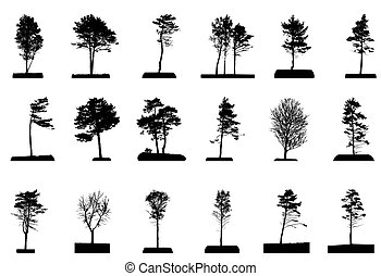Set of Green Tree Isolated on White Background. Vector Illustration.