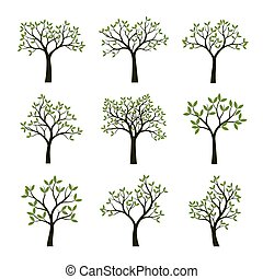 Set of green Trees with Leaves. Vector Illustration.