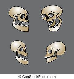 set of halloween skull