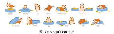 Set of hamster demonstrating English prepositions of place and movement. Bundle of funny animal with feeder and words demonstration. Educational flat cartoon vector illustration for language learning.