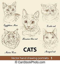 Hand drawing set of a cute cats breeds. Cat head isolated on beige background. Pencil, ink hand drawn realistic portrait. Animal collection. Good for print T-shirt, banner. Stock illustration