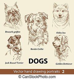 Hand drawing set of a cute dogs breeds. Dogs head isolated on beige background. Pencil hand drawn realistic portrait. Animal collection. Good for print T-shirt, banner. Stock illustration