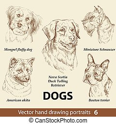 Hand drawing set of a cute dogs breeds part 6. Dogs head isolated on beige background. Pencil hand drawn realistic portrait. Animal collection. Good for print T-shirt, banner. Stock illustration