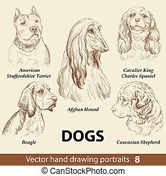 Hand drawing set of a cute dogs breeds part 8. Dogs head isolated on beige background. Pencil hand drawn realistic portrait. Animal collection. Good for print T-shirt, banner. Stock illustration