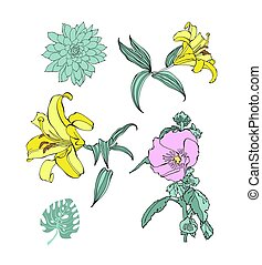 set of hand drawing flowers