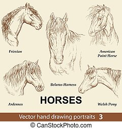 Set of hand drawing horses 3