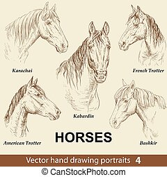 Set of hand drawing horses 4