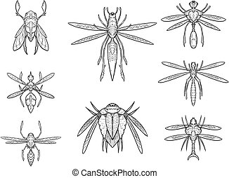 Set of Hand Drawn Cartoon Vector Alien Insect designs